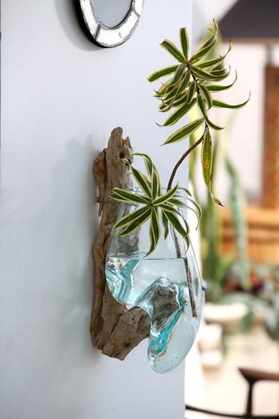 Dekowurzel mit Vase zum Hängen